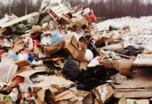 Вывоз мусора в Сходне