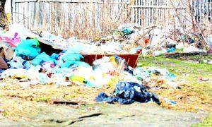 Вывоз мусора в поселке Ильинский