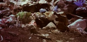 Договор на вывоз мусора