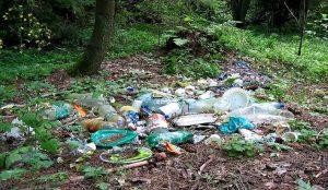 Вывоз отходов в Ступино