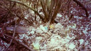 Вывоз мусора в Куровском