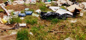 Вывоз отходов в Лосино-Петровском