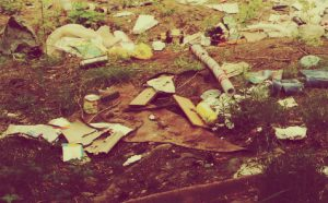 Вывоз отходов в Строгино