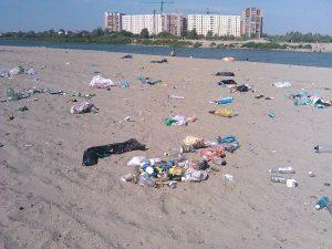 Услуги вывоза мусора в Кунцево