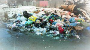 Утилизация мусора в Тимохово