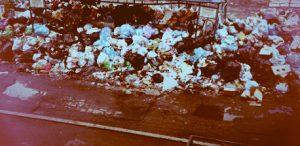Вывоз мусора ТБО