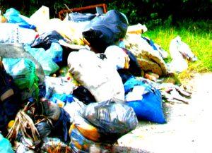Вывоз мусора в Новокосино