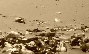 Вывоз отходов в Котельниках