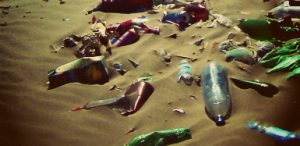 Заказать вывоз мусора во Фрязино